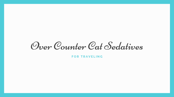 Looking For Over Counter Cat Sedatives For Traveling? | Travel With Cats